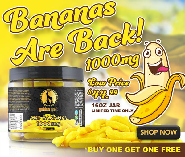 """banana lifestyle lrz - Our delicious seasonal CBD banana gummies are hard to keep in stock. Each 16 oz jar is infused with 1000mg of premium quality cannabidiol (CBD). Delicious, Fruity, Chewy, Soft & Sweet banana flavored gummies. While supplies last. THC Free. Total of 1000mg of CBD per 16oz. 15mg/CBD 